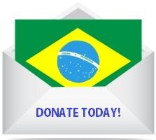 (raster image of vector) letter of brazil